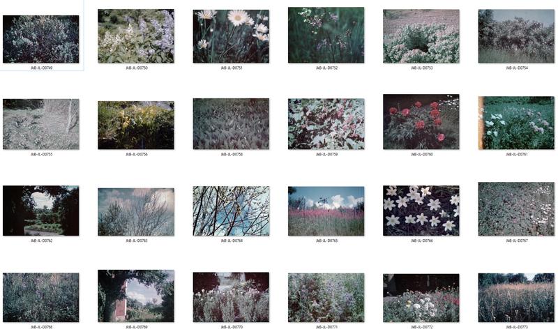 Blommor kontaktkarta 1.jpg