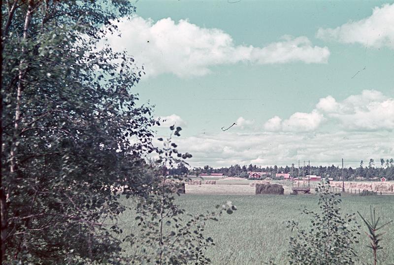 0256.jpg